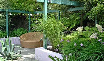 Use of dramatic planting works well with formal structures in the garden.