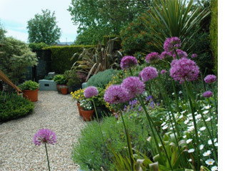 Seasonal planting in Wicklow garden design